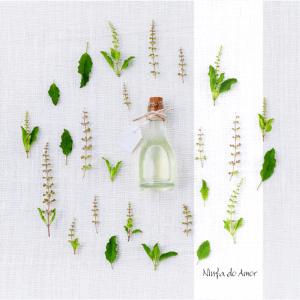 plantas_medicinais_ninfa_do_amor_servicos