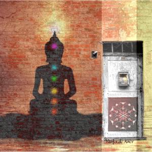 silhueta de uma pessoa e aparecendo a energia dos chakras